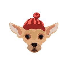 russian toy terrier dog wearing red hat portrait vector image vector image