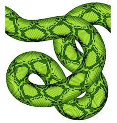 green snake seamless vector image