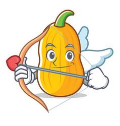 Cupid butternut squash character cartoon vector