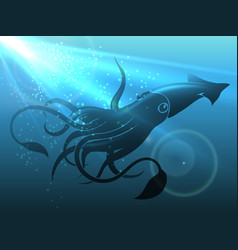 giant squid vector image