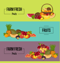 Organic farm product posters set vector
