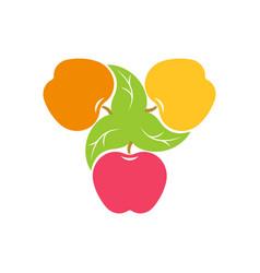 three apples logo vector image