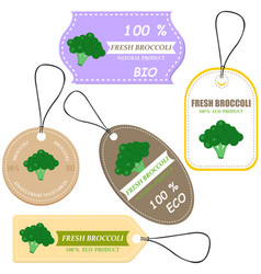 vegetable tag and farm market vector image
