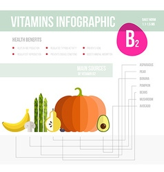 Vitamine infographic vector