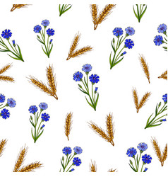 seamless pattern with cornflowers and ears vector image