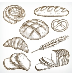 Bread sketches hand drawing vector image vector image