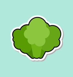 broccoli sticker on blue background colorful vector image