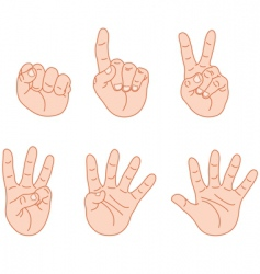 counting fingers vector image