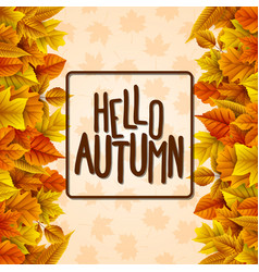 hello autumn with colorful leaves vector image