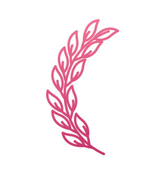 laurel decoration branch ornament image vector image