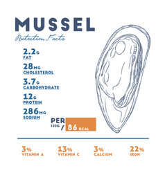 nutrition facts of mussel hand draw sketch vector image