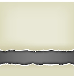 wrapped paper background vector image vector image