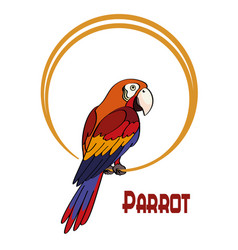 Cartoon parrot on the ring vector
