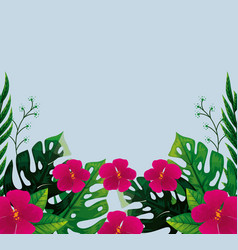 Cute Flowers Fuchsia Color With Tropical Leafs Vector Image