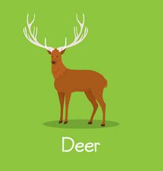 deer design on green background vector image