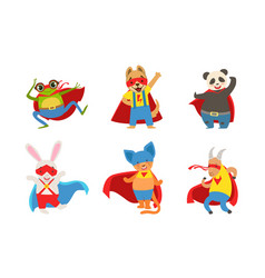 funny animals in superhero costumes vector image