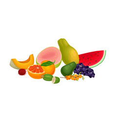 Mixed exotic fruits arrangement or composition vector