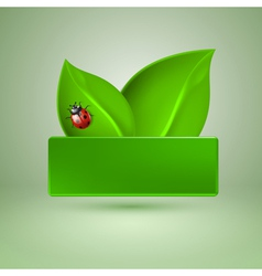 Two green leaves with ladybird vector image