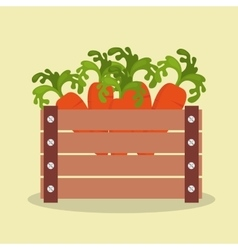 Vegetables in basket wooden icon vector