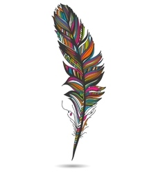 Multicolor feather isolate With white background vector image