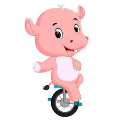 Cute happy hippopotamus riding unicycle vector