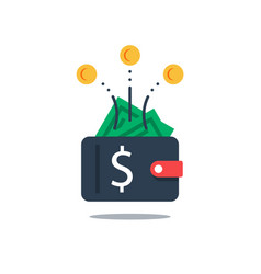 Full wallet with money financial budget vector