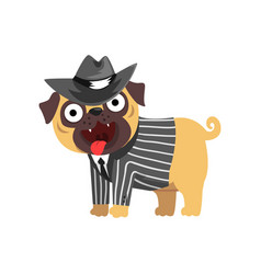 Funny pug dog character dressed as gentleman vector