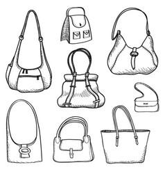 Handbags set fashion accessory women bag vector
