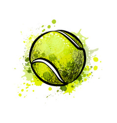 tennis ball from a splash of watercolor hand vector image