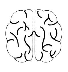 sketch brain human knowledge process vector image vector image