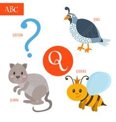 Letter Q Cartoon alphabet for children Quail vector image vector image