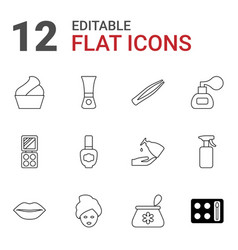 12 cosmetic icons vector