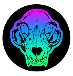 animal skull on colorful background vector image
