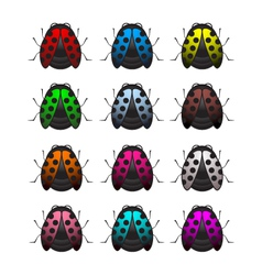 Bug set vector
