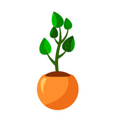 Cartoon green house plants in pots set leaf vector