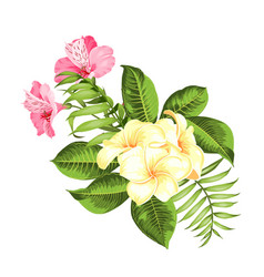 Exotic flowers bouquet color bud garland label vector