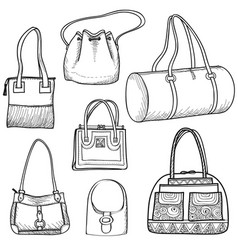Handbags set fashion accessory women bag vector