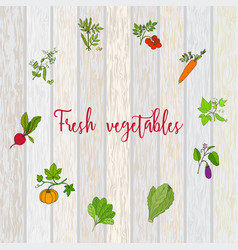 set labels with hand drawn vegetables vector image
