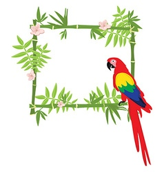 Exotic frame vector image