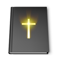 Holy bible book vector