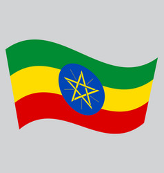 flag of ethiopia waving on gray background vector image vector image