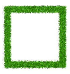 Green grass square frame with copy-space 1 vector