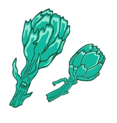 A colorful of fresh artichokes vector image