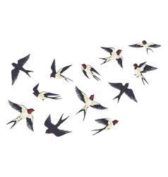Flying birds flock cartoon hand drawn swallows in vector