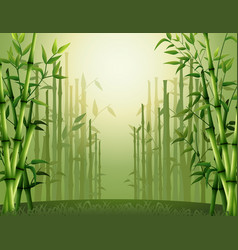 Green bamboo trees background inside the forest vector