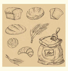 hand drawn bread rolls croissant meal vector image