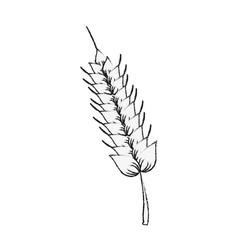 harvest of wheat symbol vector image