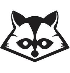 Raccon logos vector