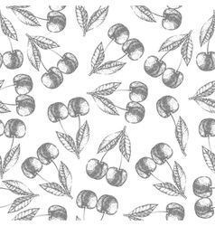 Seamless cherry pattern Fresh fruit sketch vector image
