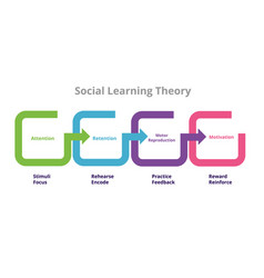 Social learning theory bandura four stages vector